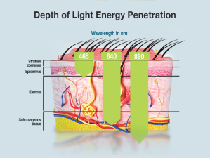 Light_Penetration